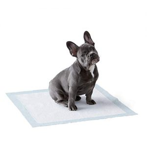 amazonbasics dog and puppy leak proof 5 layer potty training pads with
