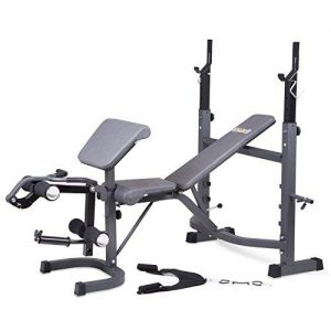 body champ bcb5860 olympic weight bench with preacher curl leg developer and